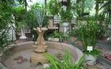 rodnik-pyatigorsk_service_winter-garden_01