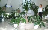 rodnik-pyatigorsk_service_winter-garden_02