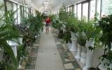rodnik-pyatigorsk_service_winter-garden_03