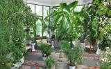 rodnik-pyatigorsk_service_winter-garden_05