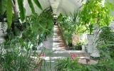 rodnik-pyatigorsk_service_winter-garden_06