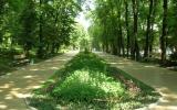 sechenova-essentuki_0_terr_park_02