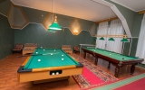 voronezh-essentuki_service_billiard_02